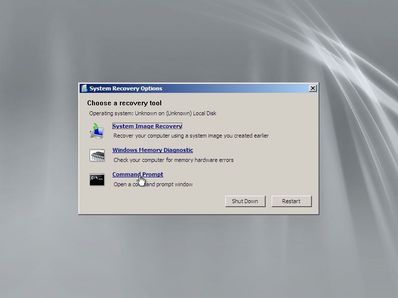 Command Prompt in System Recovery Options window