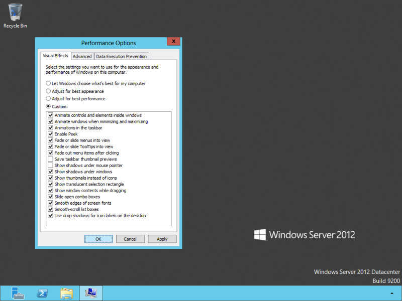 Default Visual Effects configuration of Windows 8